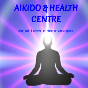 Aikido Success Blueprint