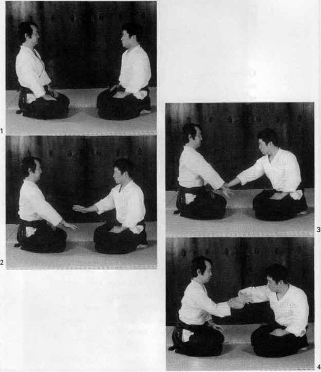 Aikido Hand Locks
