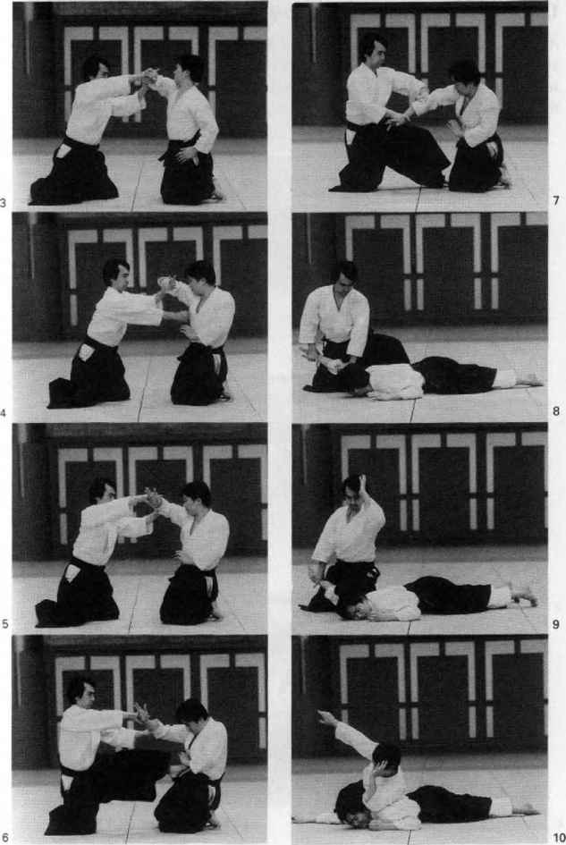 aiki jujutsu techniques pdf download